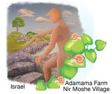 Adamama farm in Nir Moshe village, Israel.