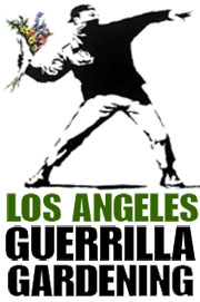 Los Angeles Guerrilla Gardening